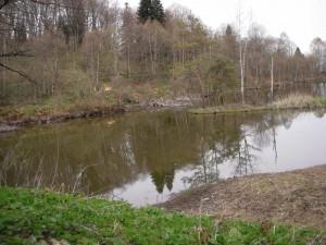 Ведьмино озеро