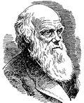 фото Ч. Р. Дарвина