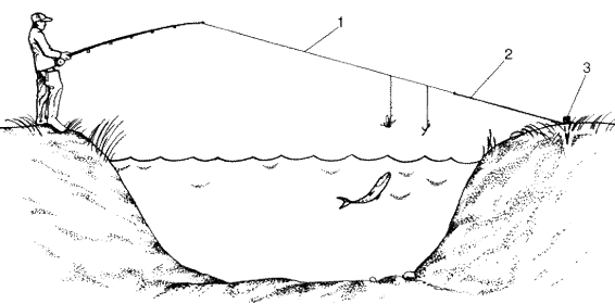 Ловля голавля на мормышку, перетягу, впроводку, нахлыстом, воблеры и блесна