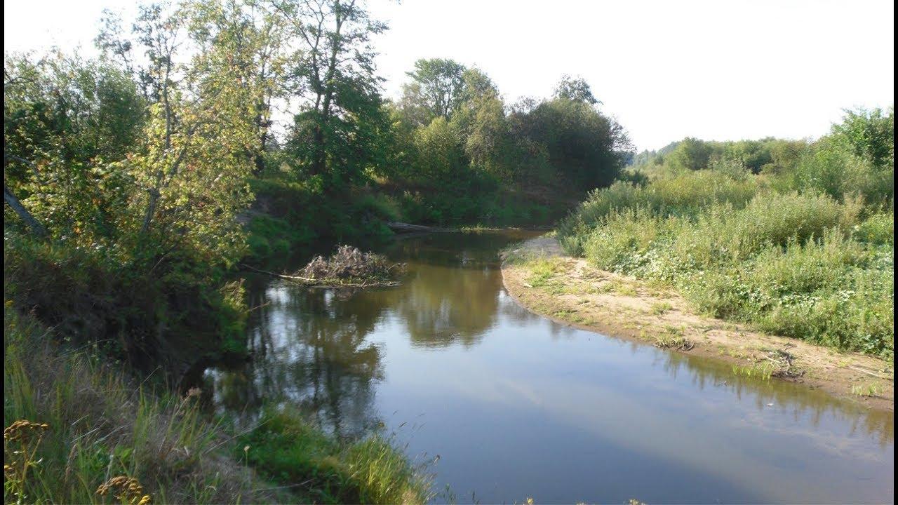 Ловля щуки в маленькой речке